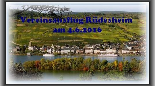 Vereinsausflug Rüdesheim 2016